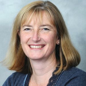 Sarah Wollaston - The Conservative Party - Totnes