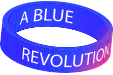 Blue Revolution - Boston & Skegness